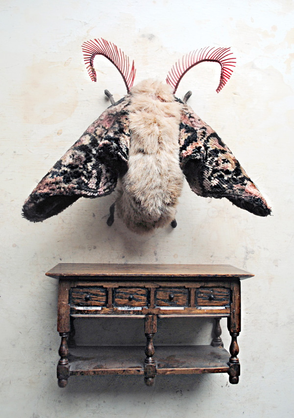 textile-moth-and-minature-table.jpg